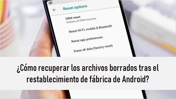 Cómo Recuperar Los Archivos Borrados Tras El