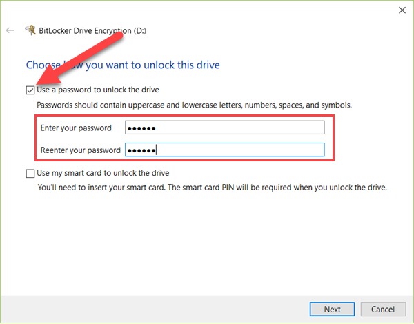 Use a password to unlock the drive.