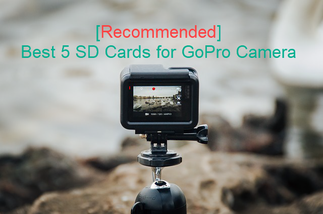 GoPro Recommended SD Cards
