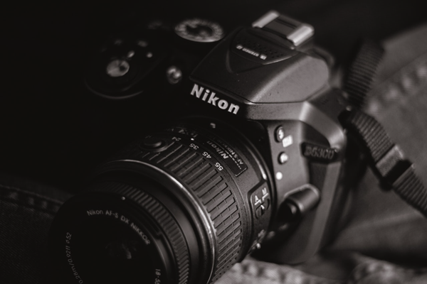 Best Nikon Photo Recovery Solution for Restoring JPEG and NEF Files