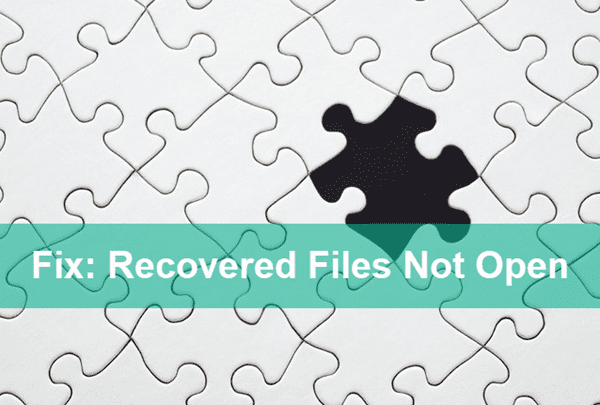 Recovered Photos, Videos and Files