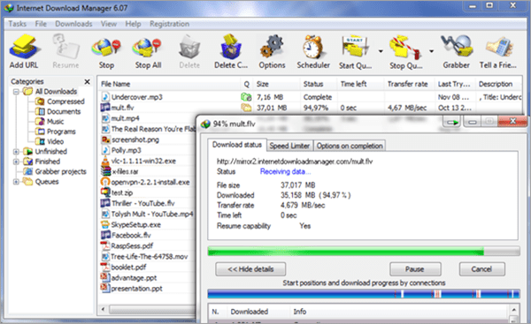 Internet Download Manager has been popular for many years.