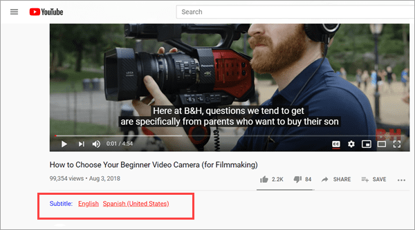 How to Extract Subtitles from Video Online YouTube